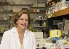Lorraine Gudas, Ph.D.