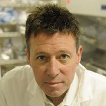 Todd Evans, Ph.D.